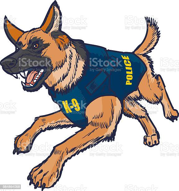Police k9 german shepherd dog with bulletproof vest illustration vector id584864058?b=1&k=6&m=584864058&s=612x612&h=0n90rjuyz4oei6s7wgxt3xvqlacjgjasjl7uzzt5hnk=