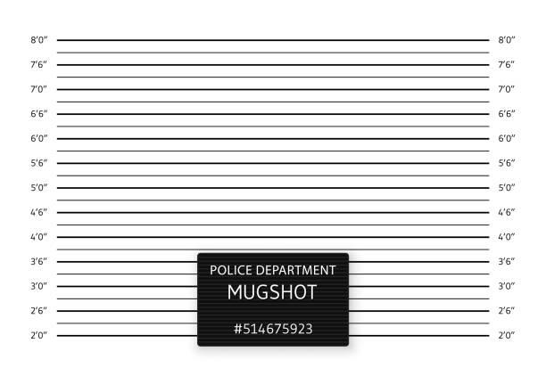 police lineup or mugshot background. vector illustration - white background stock illustrations