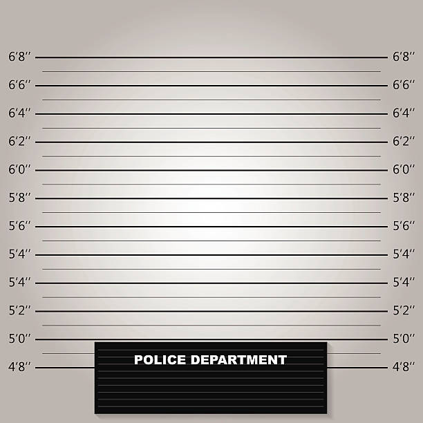 polizei lineup oder mugshot hintergrund vektor - bildformate stock-grafiken, -clipart, -cartoons und -symbole