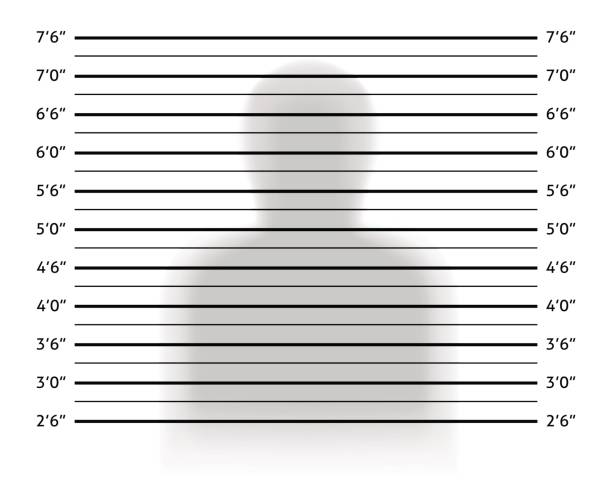 Police lineup or mugshot background with anonymous shadow. Police lineup or mugshot background with anonymous shadow. Vector illustration template police line up stock illustrations