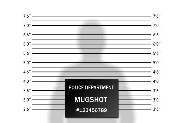 Police lineup or mugshot background with silhouette of  anonymous person Police lineup or mugshot background with silhouette of  anonymous person. Isolation. Vector illustration police line up stock illustrations