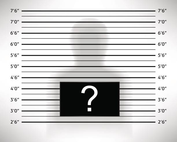 Police lineup or mugshot template with anonymous shadow. Police lineup or mugshot template with anonymous shadow. Vector illustration police line up stock illustrations