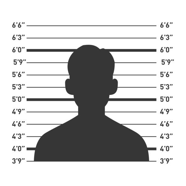 Police Lineup with Man Silhouette. Vector Police Lineup with Man Silhouette. Vector illustration mug shot stock illustrations