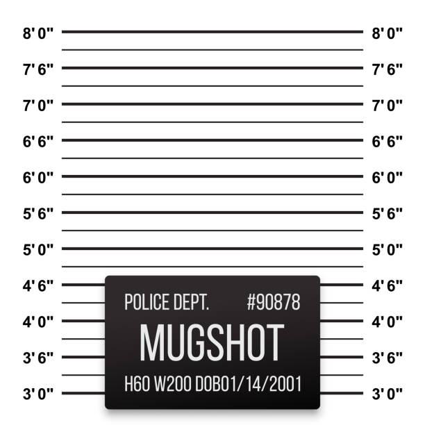 Police mug shot or mugshot vector inch lineup background Police mug shot or mugshot vector inch lineup background mug shot stock illustrations