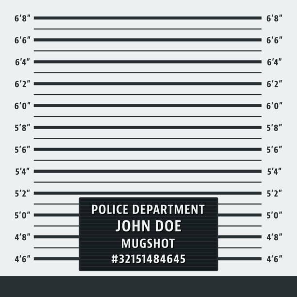 Police mugshot background Police mugshot. Police lineup background. Vector illustration mug shot stock illustrations