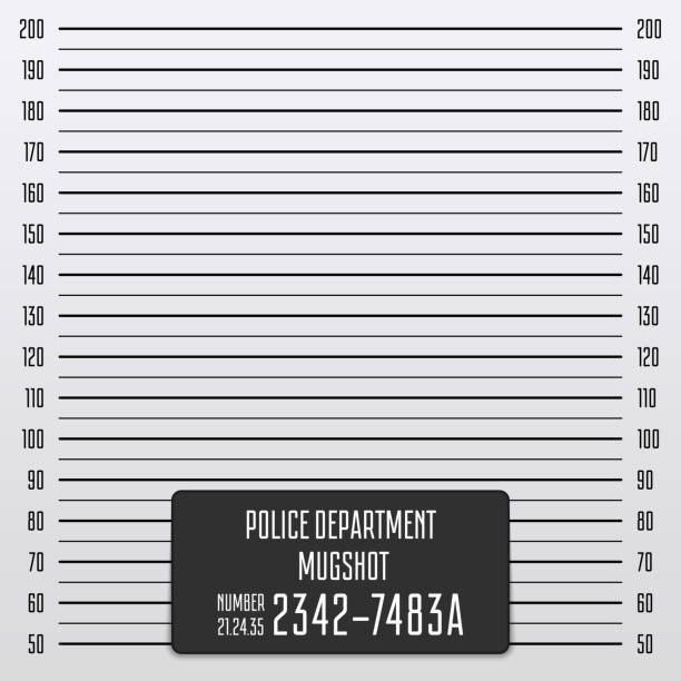 Police mugshot background. Police mugshot background. Vector police lineup template. Add a photo. Mugshot illustration with a table. EPS 10. mug shot stock illustrations