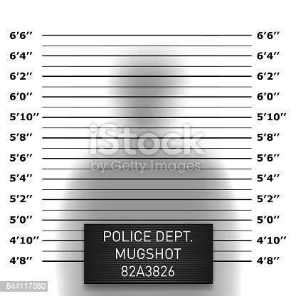 Police mugshot template in vector