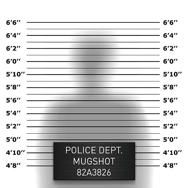 Police mugshot template Police mugshot template in vector mug shot stock illustrations