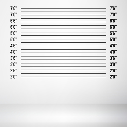 Police Mugshot Vector. Police Lineup Isolated On White Background Illustration