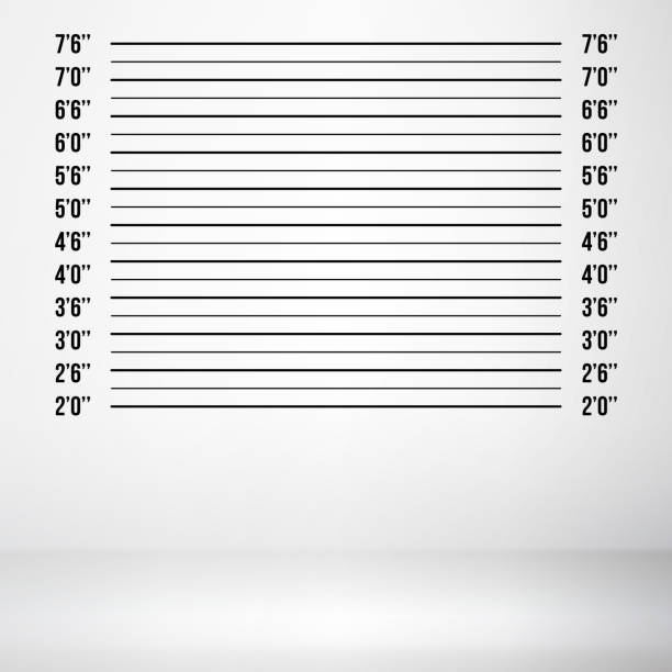 Police Mugshot Vector. Police Lineup Isolated On White Background Illustration Police Wall Lineup Metrical Imperial. Prison Background Template. Vector mug shot stock illustrations