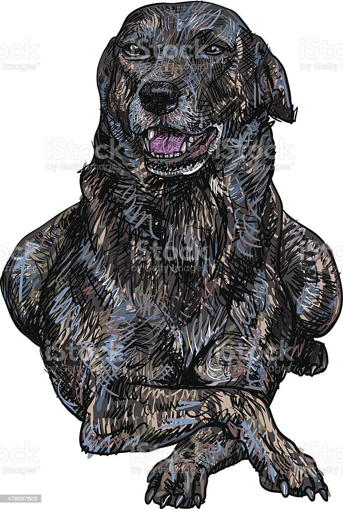 Polite pose of dog royalty-free polite pose of dog stock vector art & more images of animal