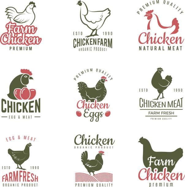 bildbanksillustrationer, clip art samt tecknat material och ikoner med pollo etiketter. snabbmat kyckling logo typer emblem gård kött av fågel vektor mall - hönsfågel