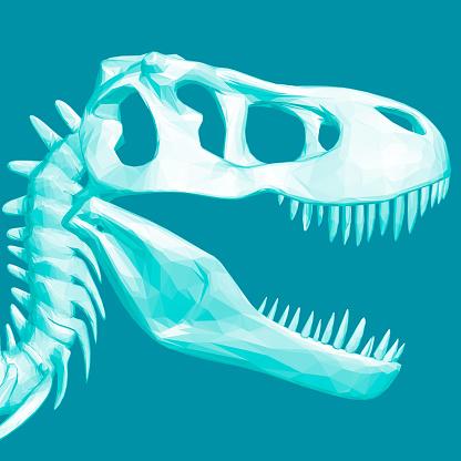 Polygonal dinosaur head. Skull of a prehistoric dinosaur. 3D. Vector illustration