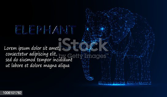 eps10. Polygonal lines abstract vector sample illustration with space elephant on the color night background