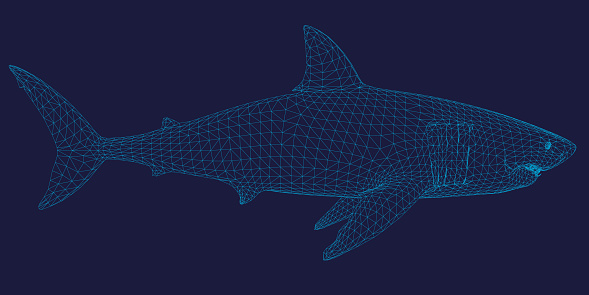 Polygonal shark frame of blue lines on a dark background. Side view. 3D.