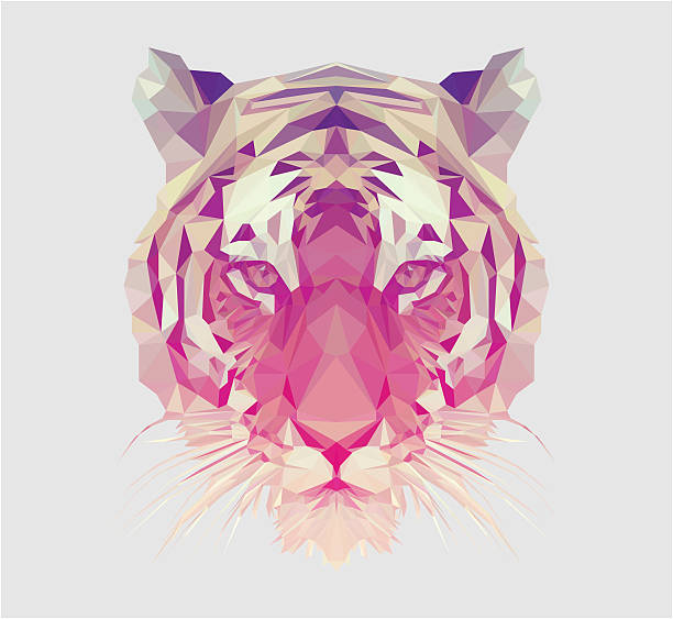 illustrations, cliparts, dessins animés et icônes de polygonal tiger portrait - tigre blanc