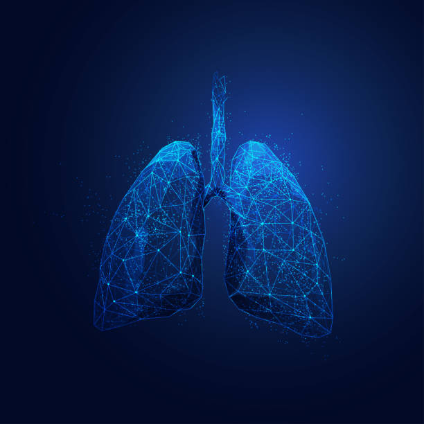 polygonLungs graphic of wireframe polygon lungs with futuristic element lung stock illustrations
