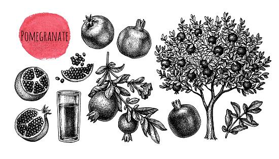 Pomegranate big set.