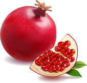 Pomegranate or garnet realistic isolated vector.