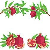 Pomegranate. Set. Vector illustration on a transparent background