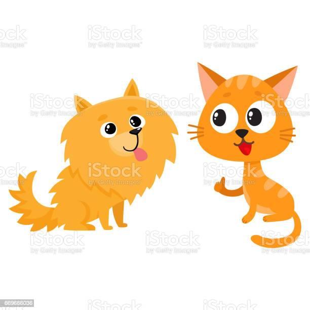 Pomeranian spitz dog and red cat kitten characters friendship concept vector id669666036?b=1&k=6&m=669666036&s=612x612&h=clfc7cqrgczipk9uqitcsfclvzypv4syy8csallomos=