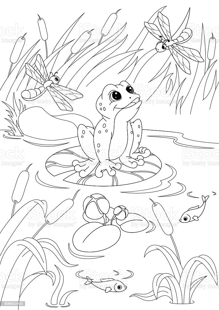 Pond Coloring Page Stock Vector Art & More Images of Animal ...