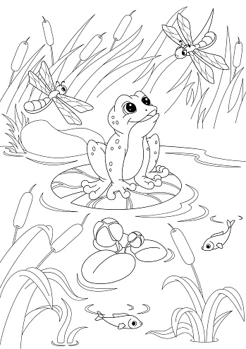 Pond Coloring Page Stock Illustration - Download Image Now