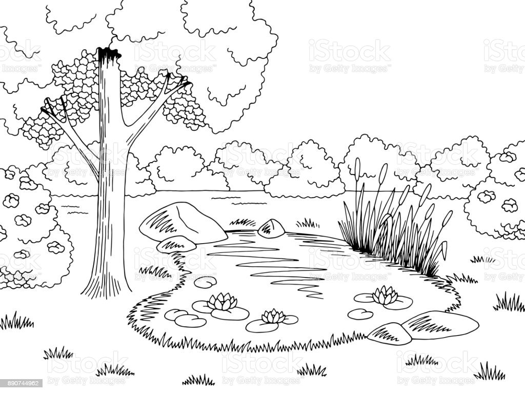 pond graphic black white lake landscape sketch illustration vector stock vector art  u0026 more