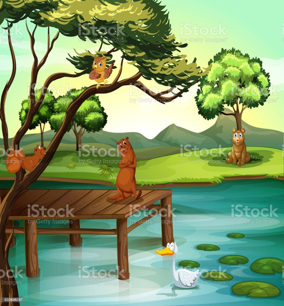 Pond scene vector art illustration