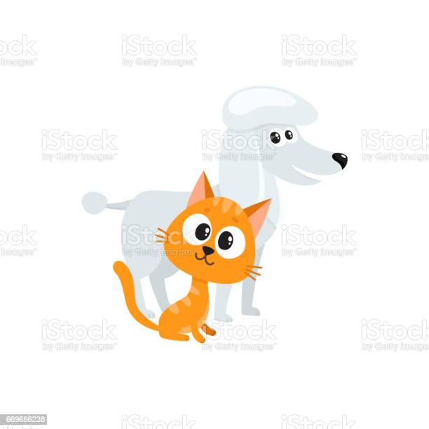 Poodle dog and red cat kitten characters friendship concept vector id669666238?b=1&k=6&m=669666238&s=612x612&h=a wzqr36igntsealbjnebd esod7 3c8layluwszufi=