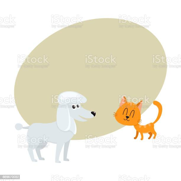 Poodle dog and red cat kitten characters friendship concept vector id669670032?b=1&k=6&m=669670032&s=612x612&h=ikoxrcyw rwtvu23cvequ g208yauschvngmz4x6s4s=