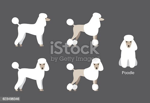 Poodle standing and watching, side view cartoon vector, dog cartoon image series