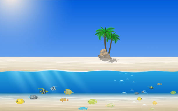 pool sunset landscape of the beach on the island in summer horizon over water stock illustrations