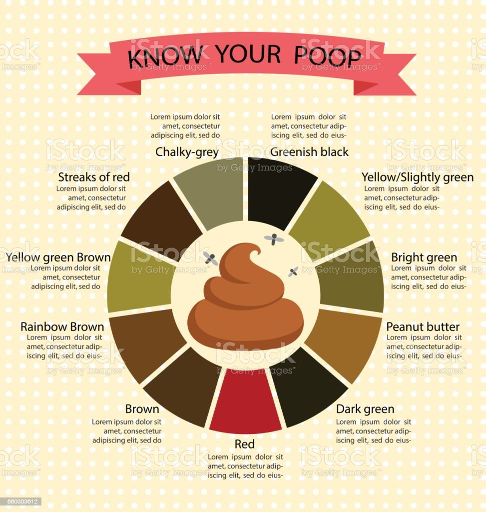 Poop stool color changes color chart and meaning healthy concept