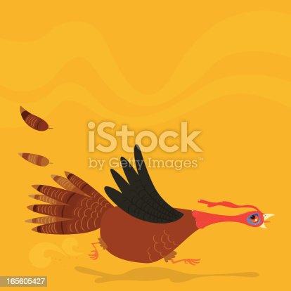 istock Poor running turkey 165605427