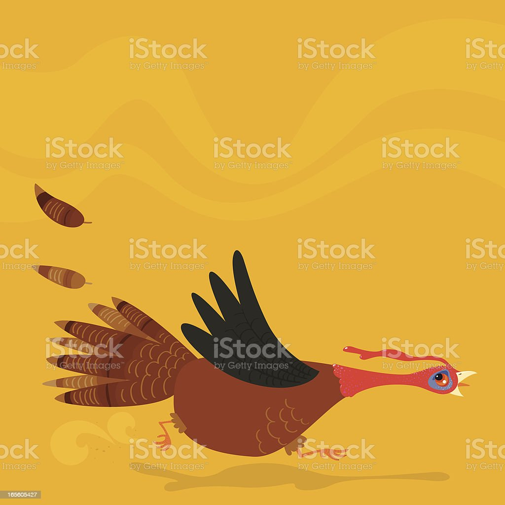 Poor running turkey vector art illustration