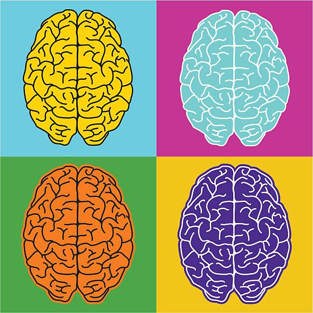 Pop brains vector art illustration
