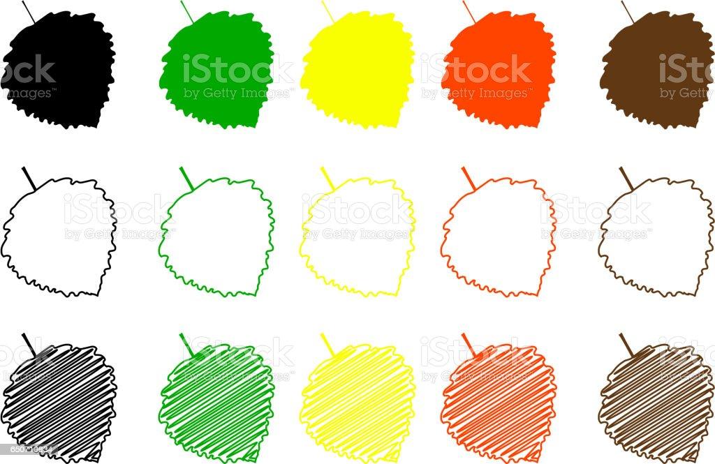 poplar aspen leaf color set vector art illustration