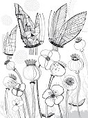 Poppies and butterflies colouring page. Vector file