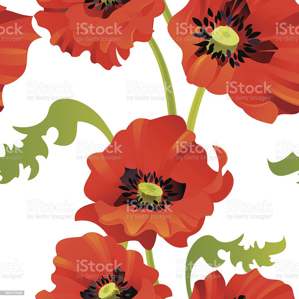 Poppies Pattern royalty-free stock vector art