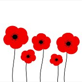 poppies vector illustration isolated on white background