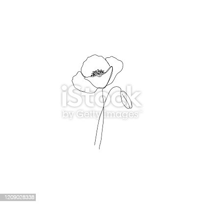 Poppy flower - continous line drawing. Usable for different purposes.