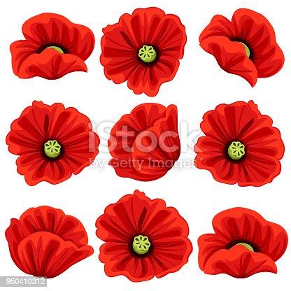 Poppy Flowers Icons Set Vector Isolated Botanical Symbols Of