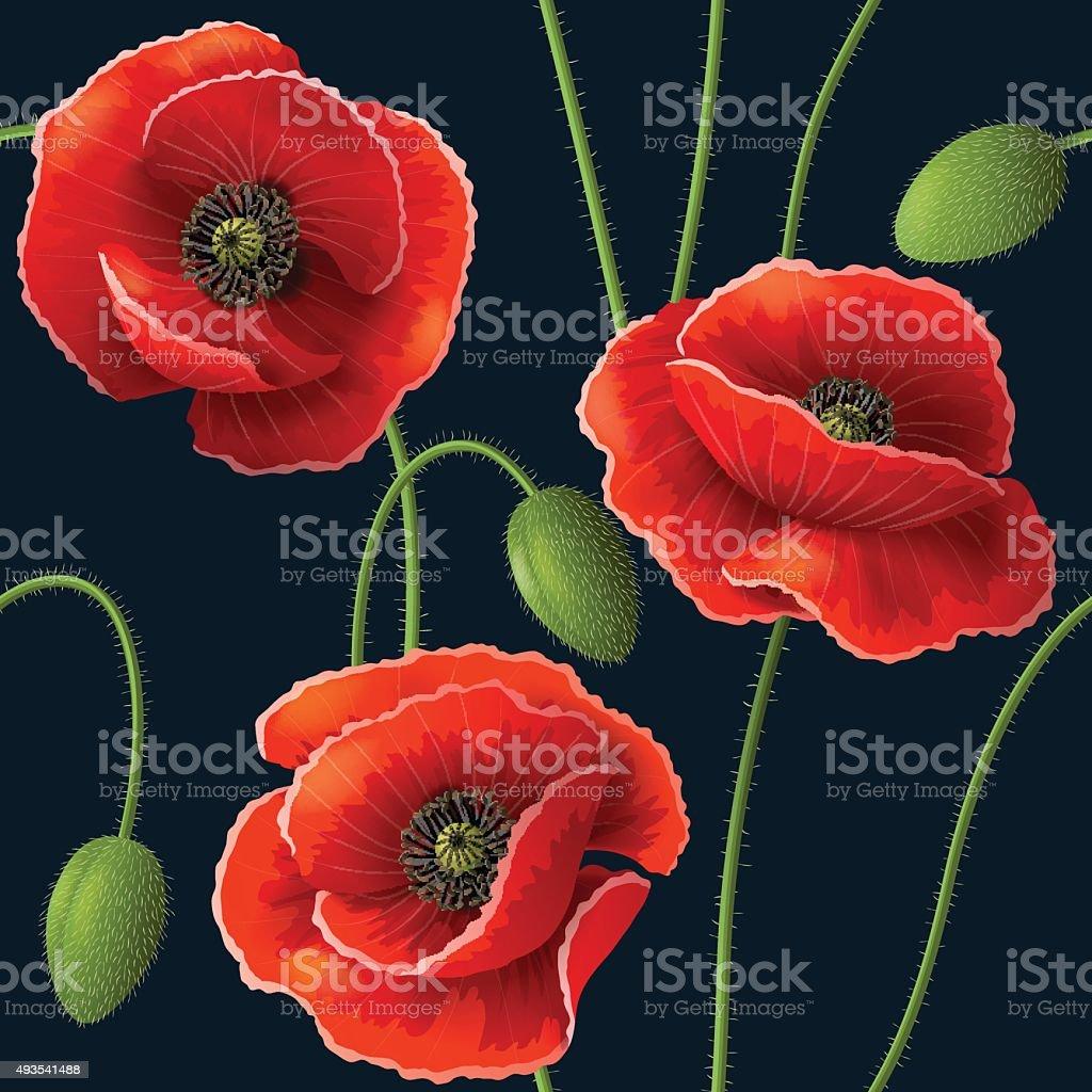 Poppy pattern on dark vector art illustration