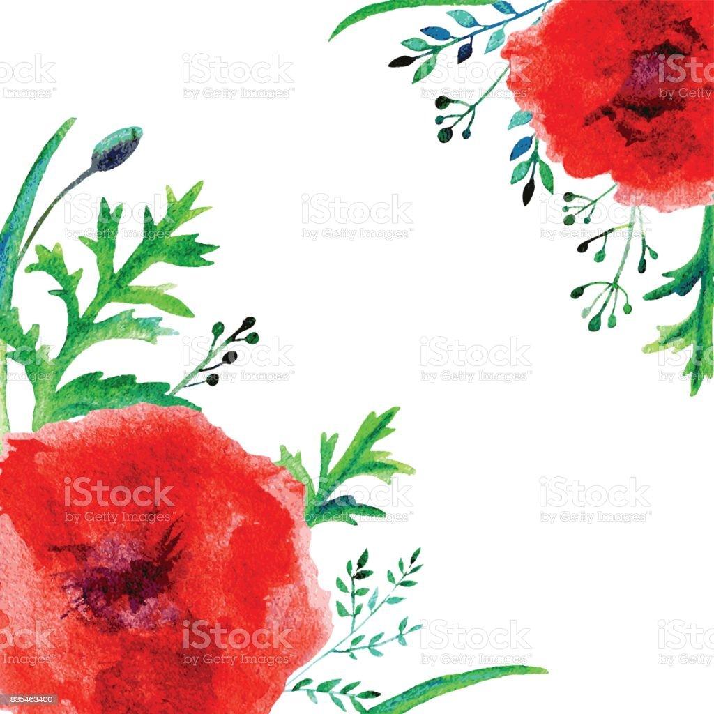 Ilustración de Ilustración Acuarela Amapola Flor Roja Aislado En ...
