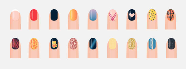 Popular different nail designs. Set of colored painted nails. Manicure, pedicure. Nail polish. Vector illustration isolated on white background Popular different nail designs. Set of colored painted nails. Manicure, pedicure. Nail polish. Vector illustration white nail polish stock illustrations