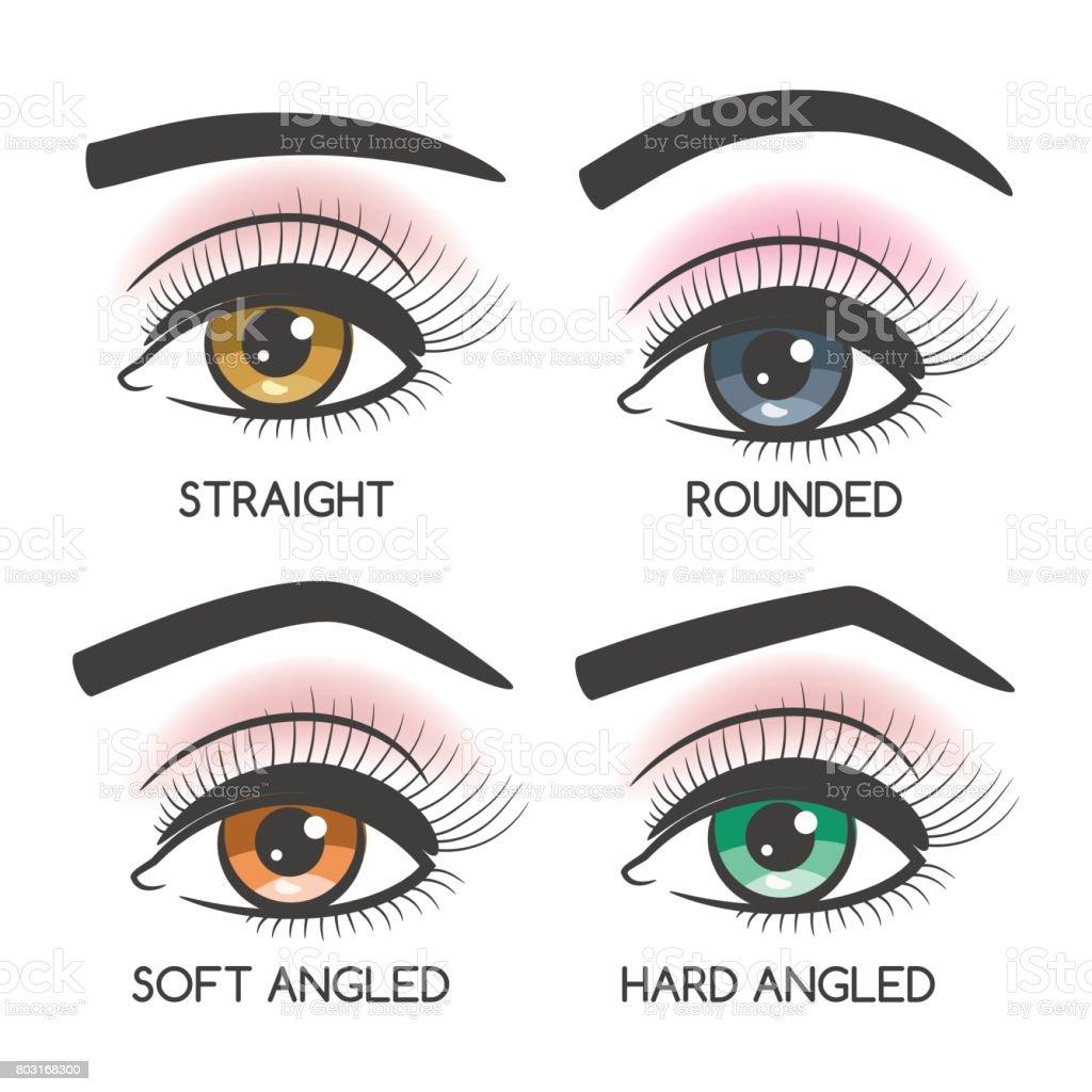 Beliebte weibliche Augenbrauen Form set – Vektorgrafik