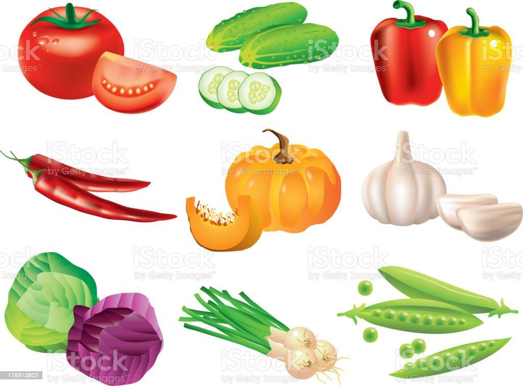 popular vegetables vector set royalty-free stock vector art
