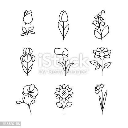 Popular wedding flowers blossoming. Thin line art icons set. Modern black symbols isolated on white for infographics or web use.