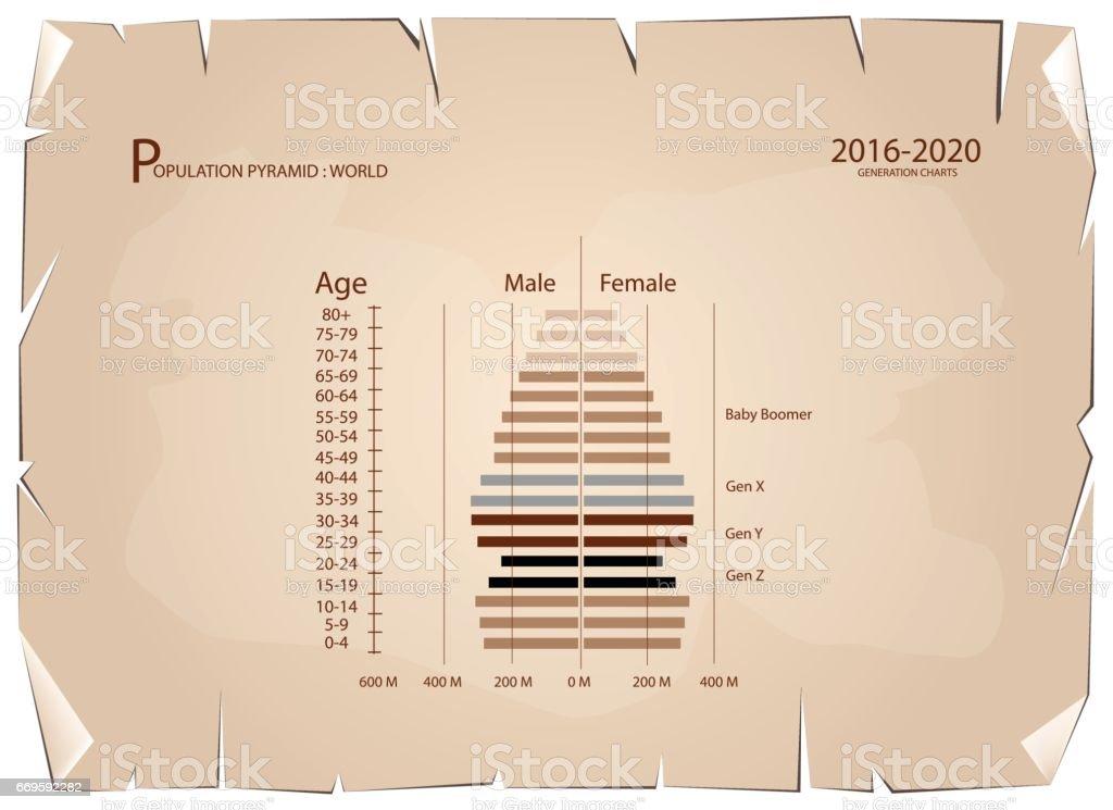 2016-2020 Population Pyramids Graphs with 4 Generation vector art illustration
